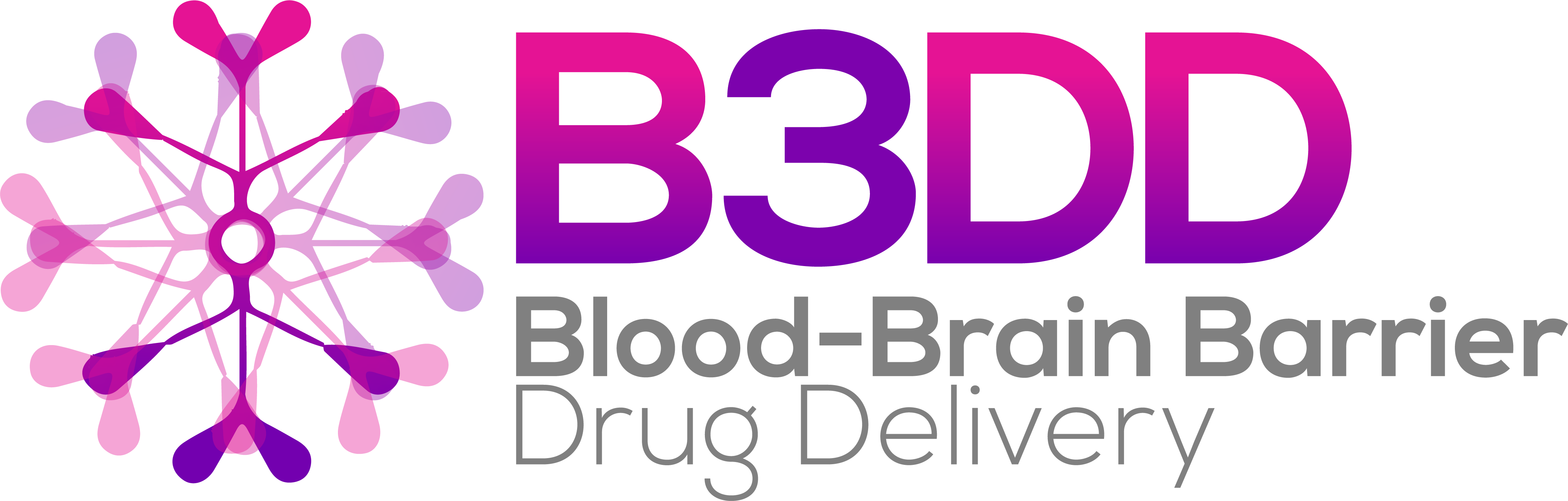 HW190327 B3DD Blood-Brain Barrier Drug Delivery logo v3